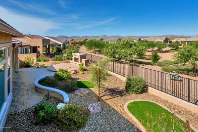 Saddlebrooke, Saddlebrooke Ranch Single Family Home For Sale: 32840 S Hyrax Lane