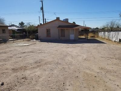 Tucson Single Family Home For Sale: 126 E Michigan Drive