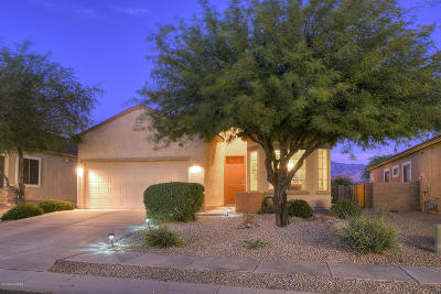 Oro Valley Single Family Home For Sale: 12862 Tarzana Drive