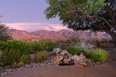 Oro Valley Single Family Home Active Contingent: 13960 N Fawnbrooke Drive