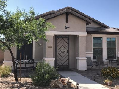 Vail Single Family Home For Sale: 10069 S Telega Drive