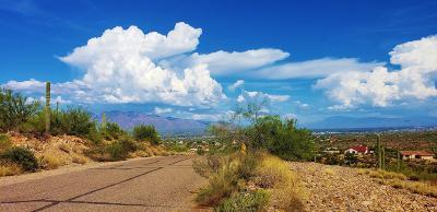 Residential Lots & Land For Sale: 5741 W Paseo De Las Estrellas #426