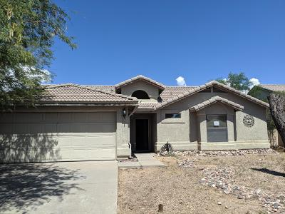 Tucson Single Family Home For Sale: 8089 S Carbury Way