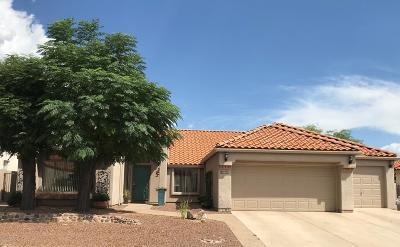 Tucson Single Family Home For Sale: 10800 N Eagle Eye Place