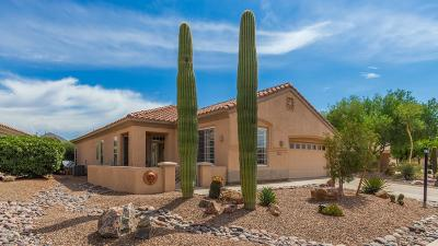 Marana Single Family Home For Sale: 12939 N Sunrise Canyon Lane