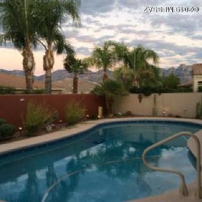 Pima County, Pinal County Single Family Home Active Contingent: 13866 Silvercreek Place