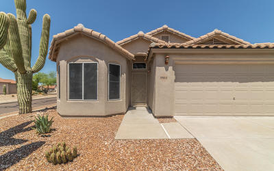 Marana Single Family Home Active Contingent: 5502 W Whiptail Court
