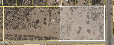 Residential Lots & Land For Sale: 4302 S Camino Verde