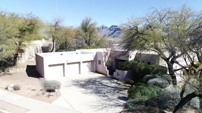Pima County, Pinal County Single Family Home For Sale: 5840 N Moccasin Trail