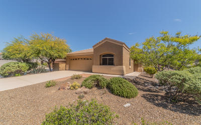 Marana Single Family Home For Sale: 13802 N Spring Desert Place