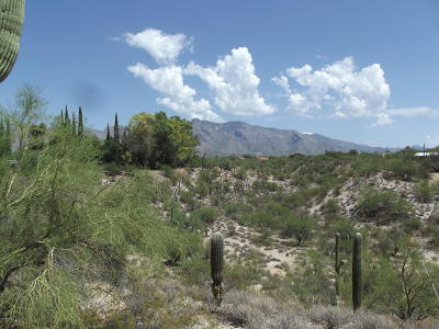 Tucson Residential Lots & Land For Sale: 5730 N Williams Drive #-