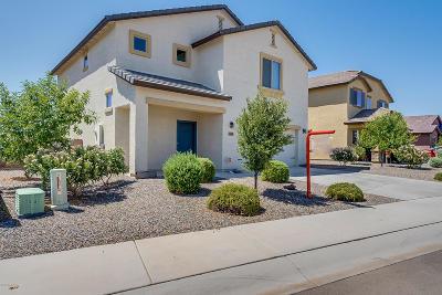 Marana Single Family Home For Sale: 11359 W Spear Shaft Drive