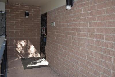 Tucson Condo For Sale: 3940 E Timrod Street