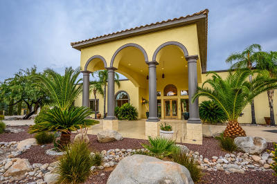 Tucson Single Family Home For Sale: 6675 N Casas Adobes Road