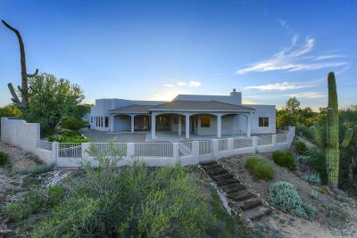 Tucson Single Family Home For Sale: 9610 N Camino Del Plata