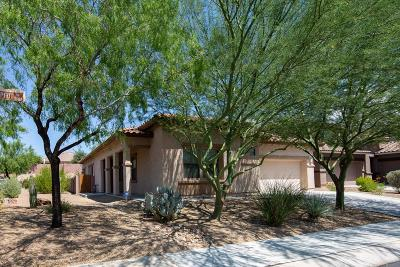 Marana Single Family Home For Sale: 3442 W Copper Spirit Drive