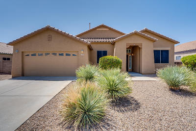 Marana Single Family Home For Sale: 12925 N Bass Canyon Drive