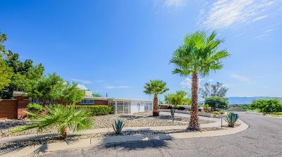 Tucson Single Family Home For Sale: 7625 E Lerma Place