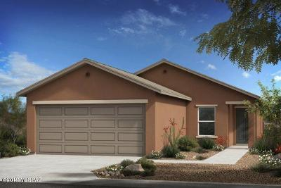 Tucson Single Family Home For Sale: 8608 E River Reserve Drive