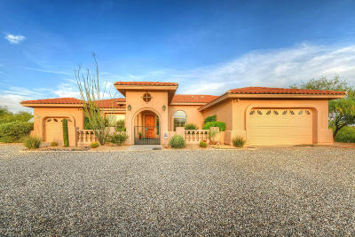 Tucson Single Family Home For Sale: 2795 W Coyote Desert Drive