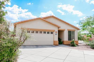 Tucson Single Family Home Active Contingent: 3390 N Camino Rio Colorado