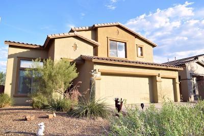 Tucson Single Family Home For Sale: 8360 N Amber Burst Drive