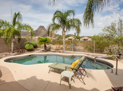 Tucson Single Family Home Active Contingent: 7891 N Lime Star Drive