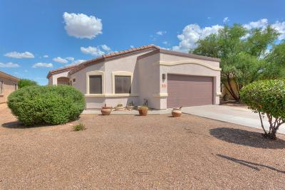 Sahuarita Single Family Home For Sale: 14485 S Camino Rio Abajo