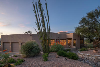 Tucson Single Family Home For Sale: 1751 E Buck Ridge Place