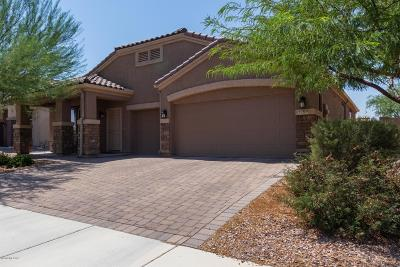 Marana Single Family Home For Sale: 9709 N Hebden Way