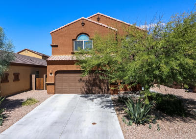 Tucson Single Family Home For Sale: 8767 N Norway Spruce Road