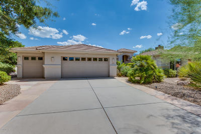 Tucson Single Family Home Active Contingent: 38183 S Arroyo Way