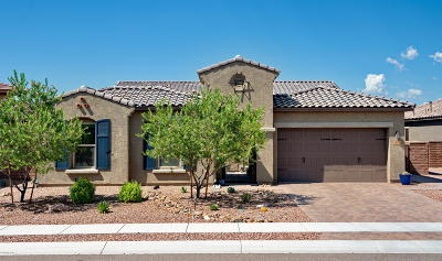 Oro Valley Single Family Home For Sale: 972 W Golden Barrel Court