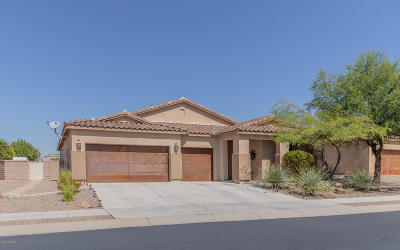 Marana Single Family Home Active Contingent: 11379 N Adobe Village Place