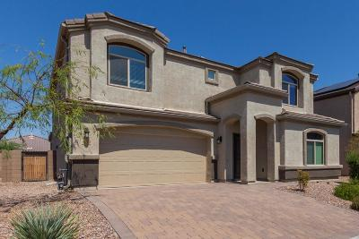 Marana Single Family Home For Sale: 8832 W Atlow Road