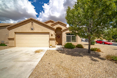 Pima County Single Family Home For Sale: 5080 W Foothills Blue Lane