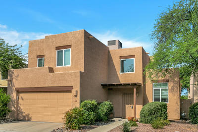 Tucson Single Family Home For Sale: 3463 N Sagewood Drive