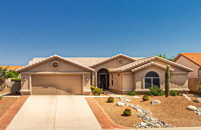 Tucson Single Family Home For Sale: 36967 S Ridgeview Boulevard