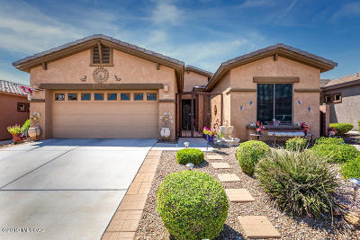 Marana Single Family Home For Sale: 12619 N Gentle Rain Drive