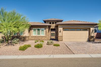 Marana Single Family Home For Sale: 14205 Hidden Arroyo Ps