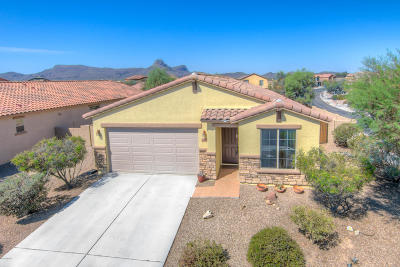 Tucson Single Family Home Active Contingent: 8633 N Lodgepole Pine Trail