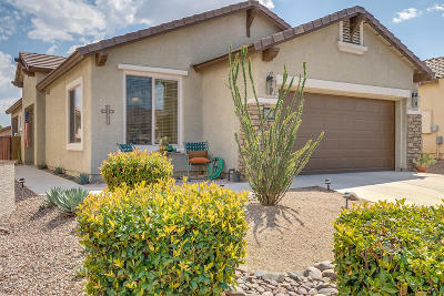 Sahuarita Single Family Home For Sale: 443 W Calle Del Estribo