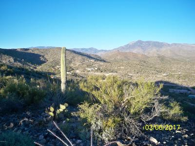 Residential Lots & Land For Sale: 15480 E Colossal Cave Road