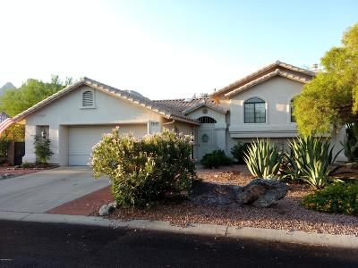 Tucson Single Family Home For Sale: 1600 E Grimaldi Place