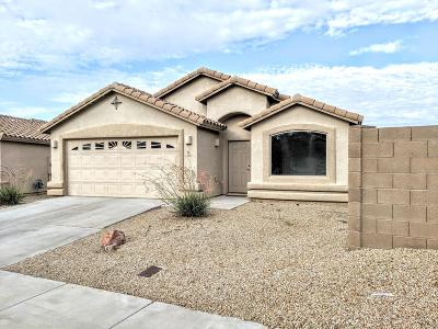 Marana Single Family Home For Sale: 12435 N Floating Feather Lane