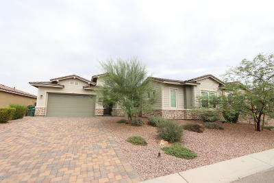 Marana Single Family Home For Sale: 14171 N Hidden Arroyo Pass
