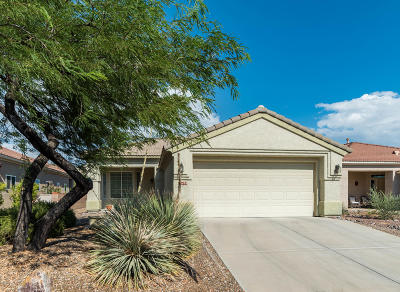 Marana Single Family Home Active Contingent: 13478 N Holly Grape Drive