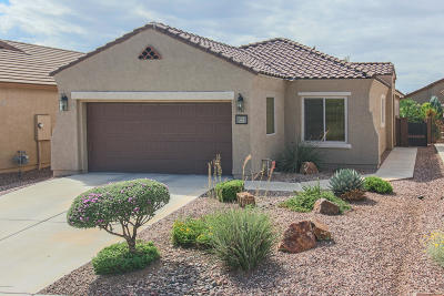 Sahuarita Single Family Home For Sale: 275 W Calle Moncayo
