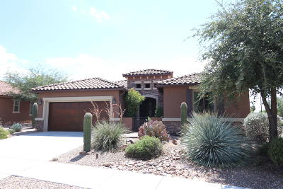 Oro Valley Single Family Home For Sale: 436 E Channel View Place