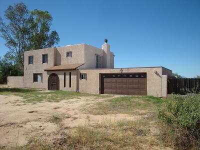 Tucson Single Family Home For Sale: 10870 S Sierrita Mountain Road
